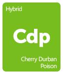 Leafly Cherry Durban Poison cannabis strain tile