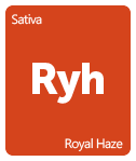 Leafly Royal Haze cannabis strain tile