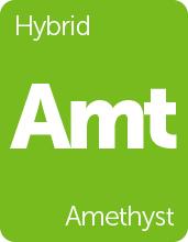 Leafly Amethyst cannabis strain tile