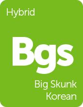 Leafly Big Skunk Korean hybrid cannabis strain tile