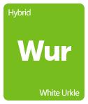 Leafly white urkle cannabis strain tile