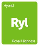 Leafly Royal Highness cannabis strain tile