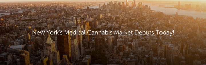 New York's Medical Cannabis Market Debuts Today!
