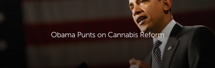 Obama Punts on Cannabis Reform
