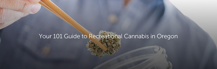 Your 101 Guide to Recreational Cannabis in Oregon