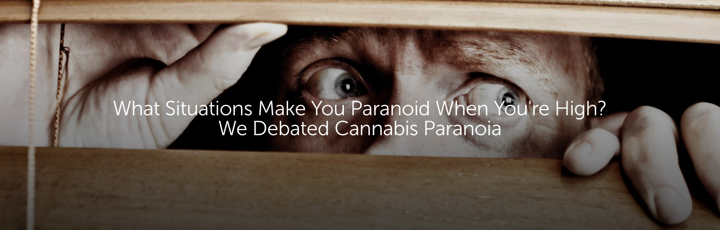 What Situations Make You Paranoid When You're High? We Debated Cannabis Paranoia