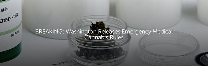 Washington Releases Emergency Medical Cannabis Rules