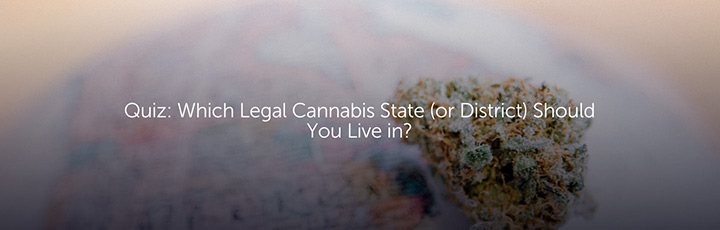 Quiz: Which Legal Cannabis State (or District) Should You Live In?