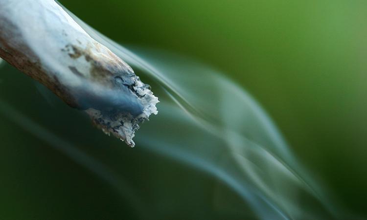 Cannabis joint billowing smoke