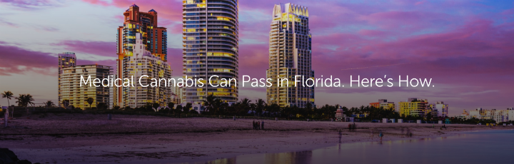 Medical Cannabis Can Pass in Florida. Here's How.