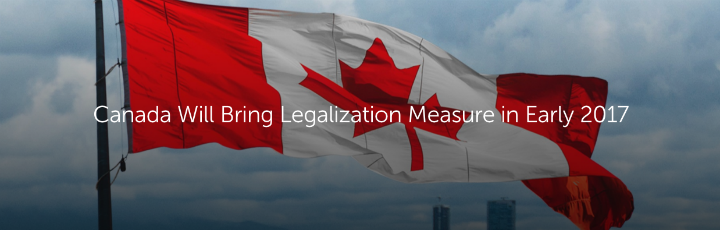 Canada Will Bring Legalization Measure in Early 2017