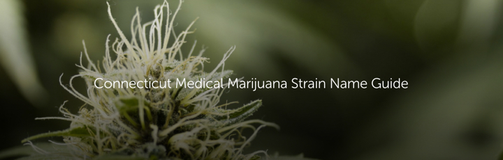 Connecticut Medical Marijuana Strain Name Guide