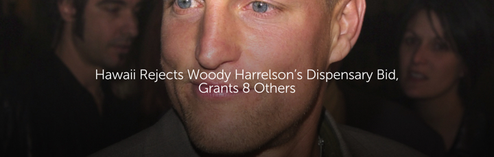 Hawaii Rejects Woody Harrelson's Dispensary Bid, Grants 8 Others