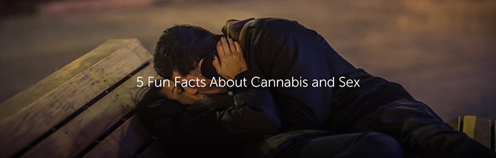 5 Fun Facts About Cannabis and Sex