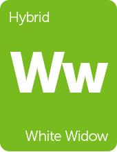 Leafly White Widow cannabis strain tile