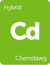 Leafly Chemdawg cannabis strain tile
