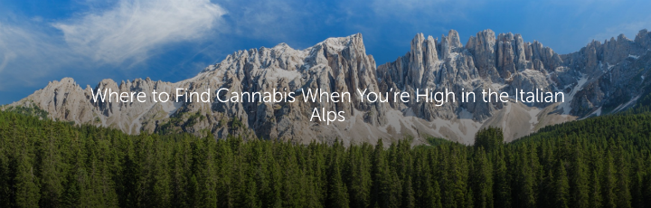 Where to Find Cannabis When You're High in the Italian Alps