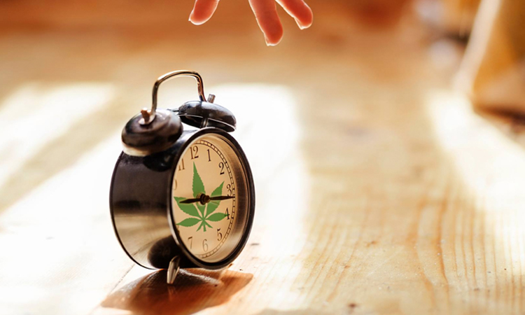 Alarm clock with a cannabis leaf design on it