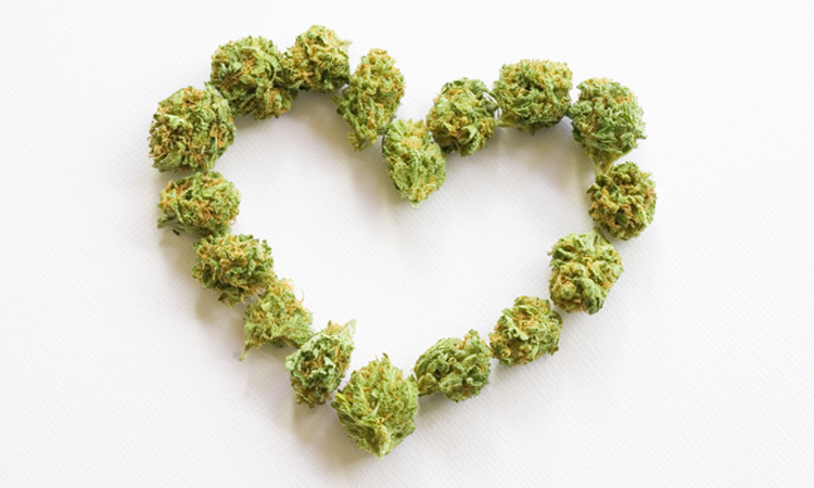 A heart made with cannabis flowers