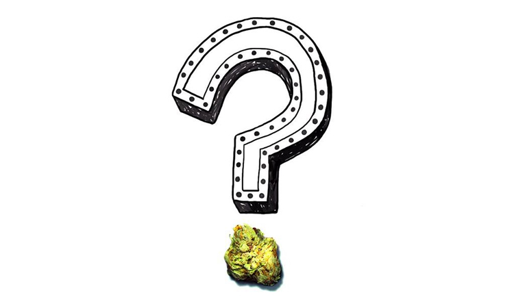 A question mark with a cannabis flower as the dot