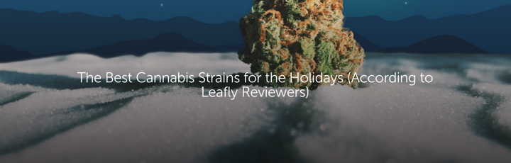 The Best Cannabis Strains for the Holidays (According to Leafly Reviewers)