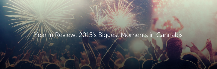 Leafly's Year in Review: 2015's Biggest Moments in Cannabis
