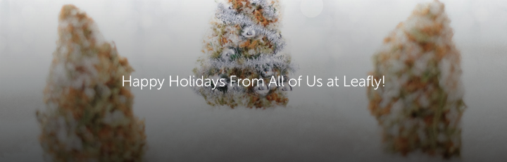 Happy Holidays From All of Us at Leafly