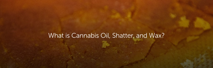 What is Cannabis Oil, Shatter & Wax?
