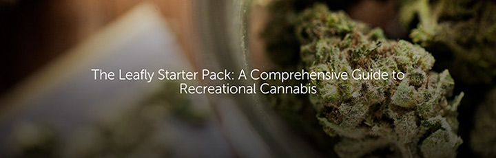 The Leafly Starter Pack: A Comprehensive Guide to Recreational Cannabis