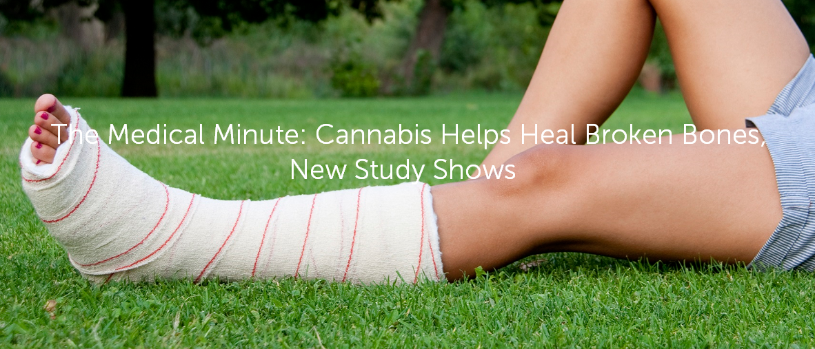 The Medical Minute: Cannabis Helps Heal Broken Bones, New Study Shows