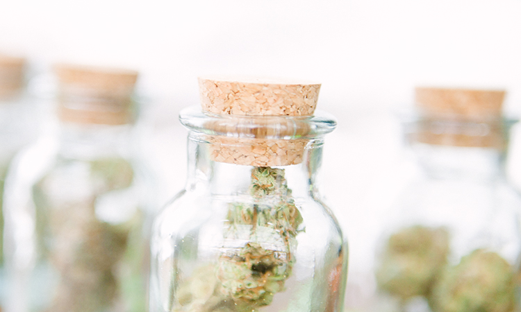 Four glass cork-top jars filled with cannabis in front of a white background