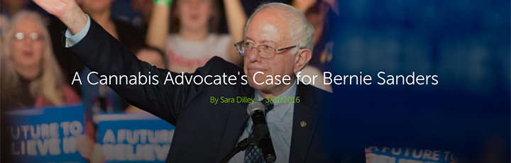 A Cannabis Advocate's Case for Bernie Sanders Leafly article header