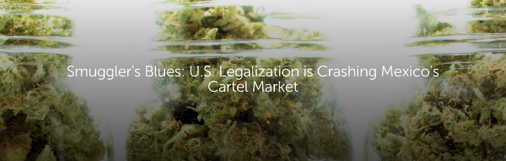 Smuggler's Blues: U.S. Legalization is Crashing Mexico's Cartel Market