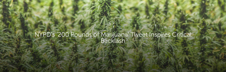 NYPD's '200 Pounds of Marijuana' Tweet Inspires Critical Backlash