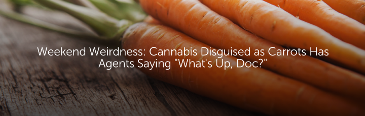 "Weekend Weirdness: Cannabis Disguised as Carrots Has Agents Saying ""What's Up, Doc?"""