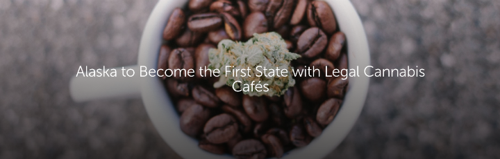 Alaska to Become the First State with Legal Cannabis Cafés