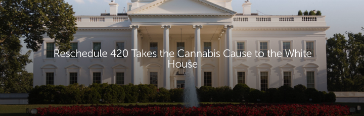 Reschedule 420 Takes the Cannabis Cause to the White House