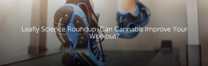 Leafly Science Roundup: Can Cannabis Improve Your Workout?