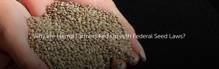 Why are Hemp Farmers Fed Up with Federal Seed Laws?