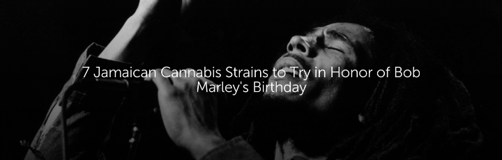 7 Jamaican Cannabis Strains to Try in Honor of Bob Marley's Birthday