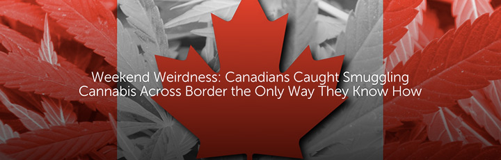 Weekend Weirdness: Canadians Caught Smuggling Cannabis Across Border the Only Way They Know How