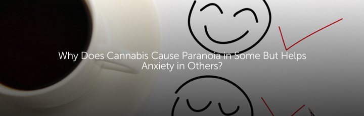 Why Does Cannabis Cause Paranoia in Some But Helps Anxiety in Others?