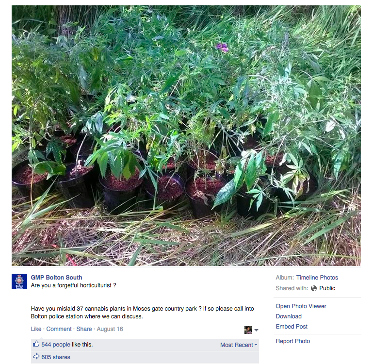 Bolton South police Facebook message about misplaced cannabis plants