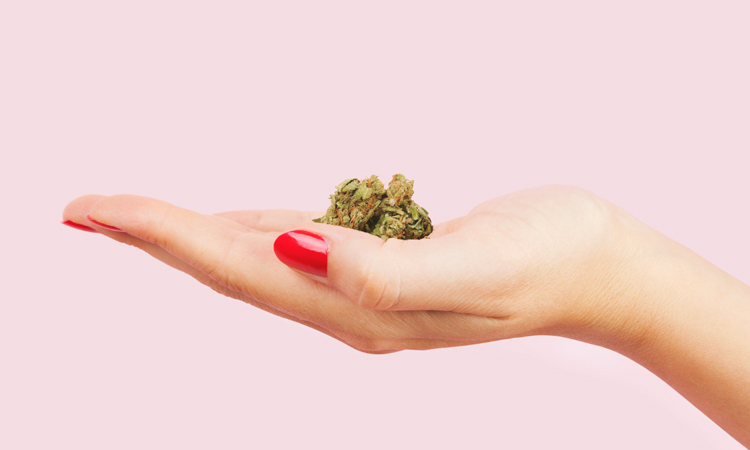 A woman's hand holding cannabis flower