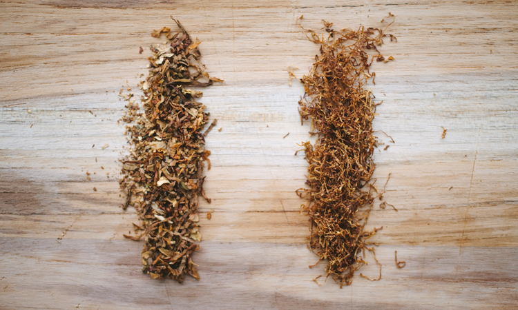 Side by side comparison of tobacco from a pre-rolled cigarette and high-quality loose-leaf tobacco