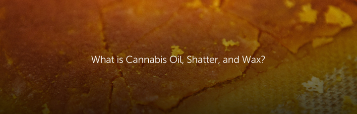 What is Cannabis Oil, Shatter, and Wax?