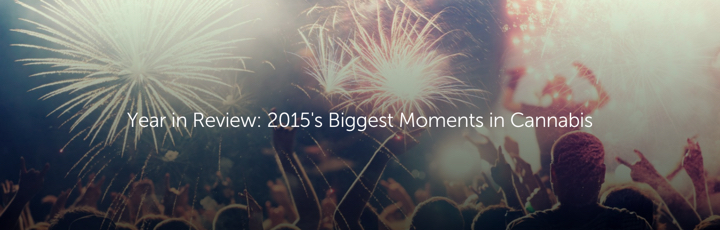 Year in Review: 2015's Biggest Moments in Cannabis