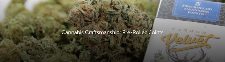 cannabis craftsmanship pre-roll joints