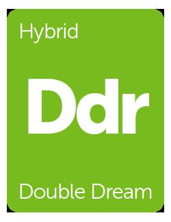 Leafly Double Dream cannabis strain tile