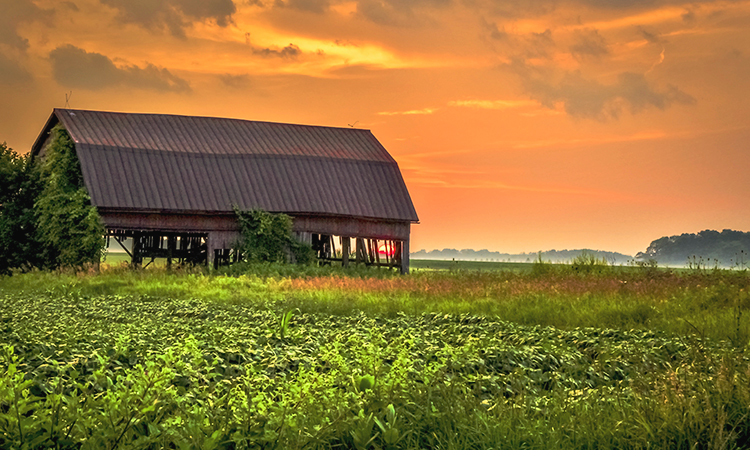 Midwest farm at sunset in Oklahoma